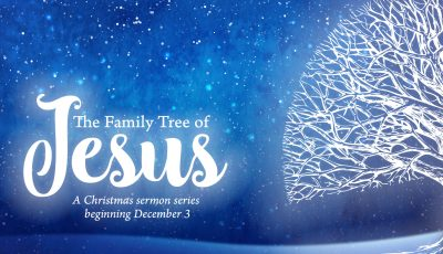 David's Community Bible Church » Sermon Series